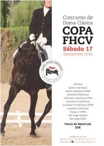 COPA II FHCV DOMA CLASICA @ CH EQUITECNIC