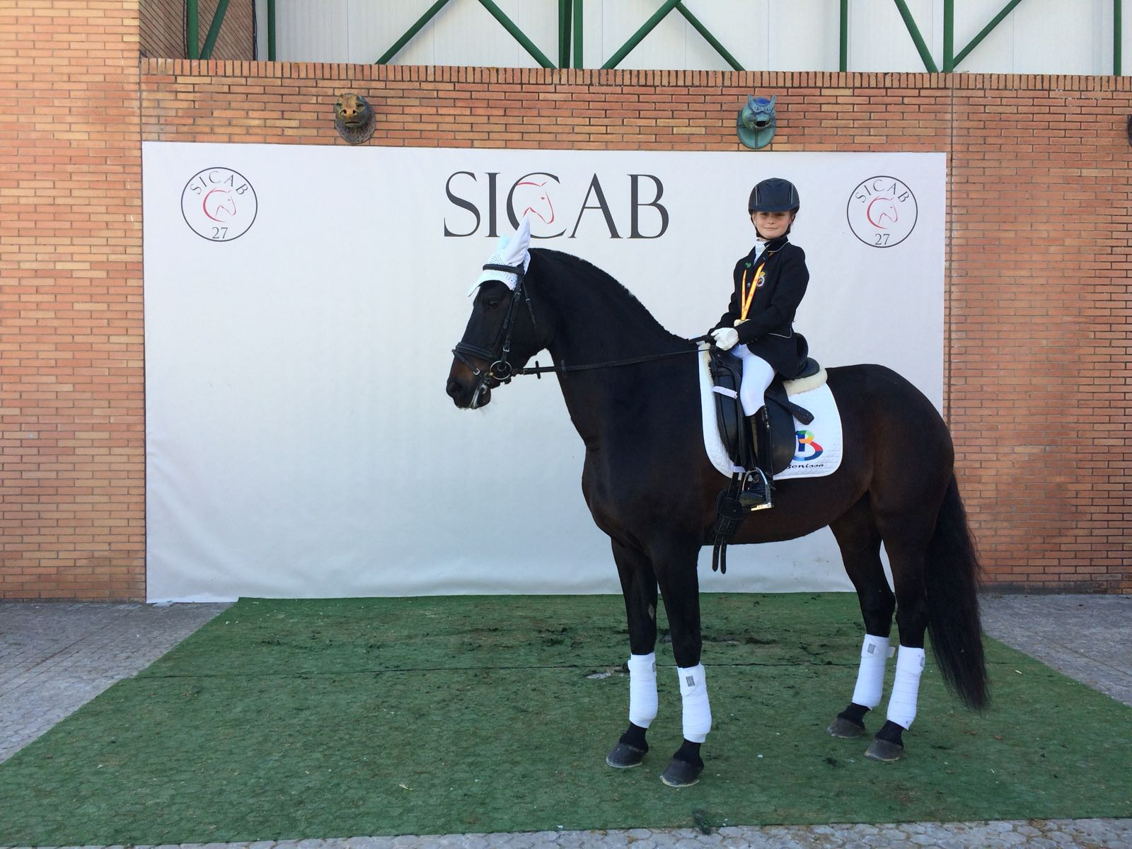 SICAB 2017