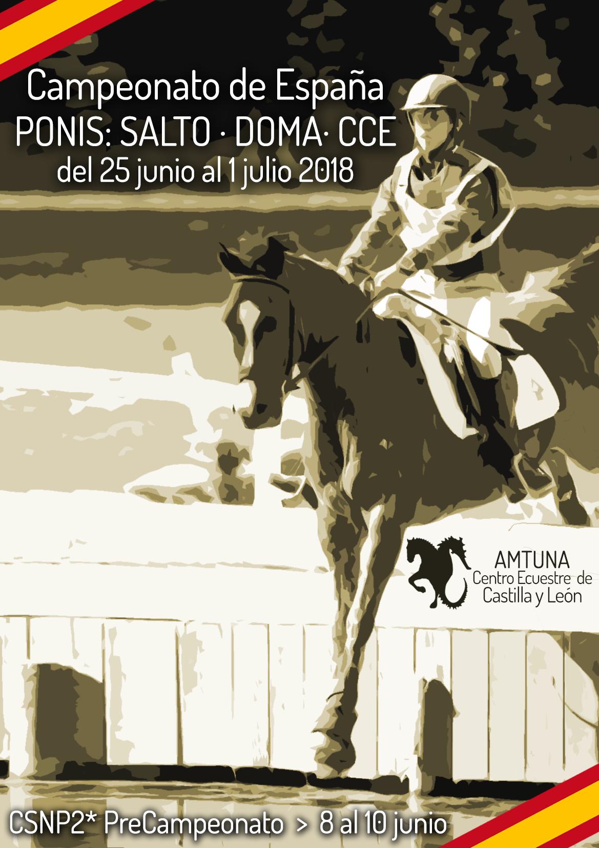 Campeonato-España-Ponis-2018