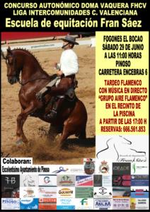 CONCURSO AUT. DOMA VAQUERA - E.E. FRAN SAEZ